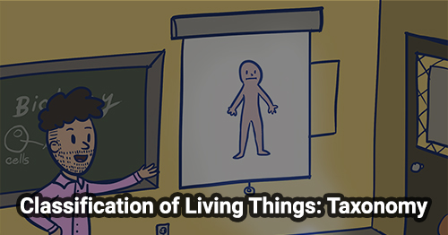 Classification of Living Things: Taxonomy