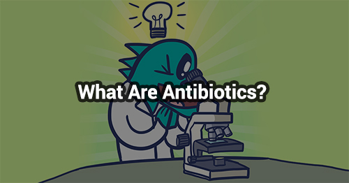 What Are Antibiotics & How Do They Work?